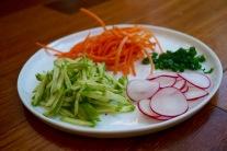 Shredded carrot, shredded cucumber, minced green onion and sliced radish.